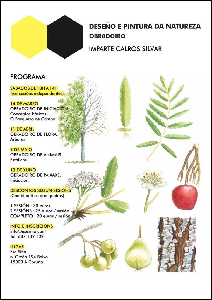 ilustración, Natureza, taller, obradoiro na Coruña